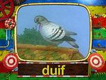 De duif